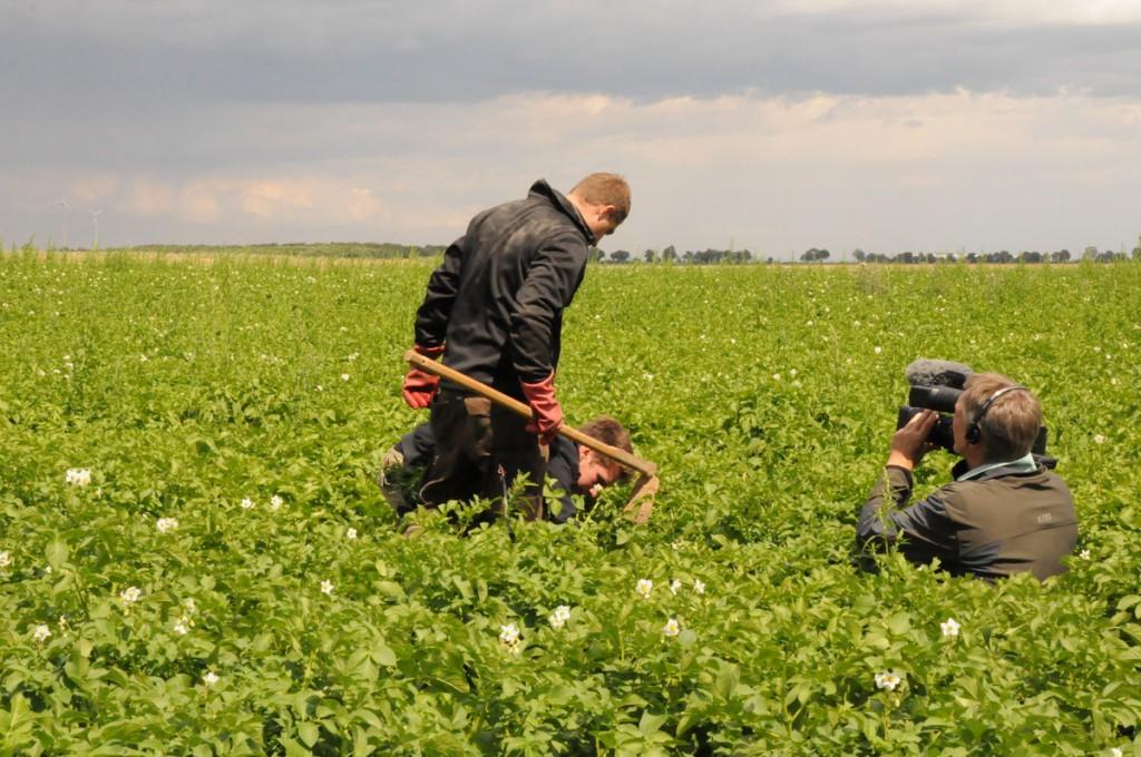 Landwirt Dreh: Kartoffeln testen. Foto: Stephanie Pletsch